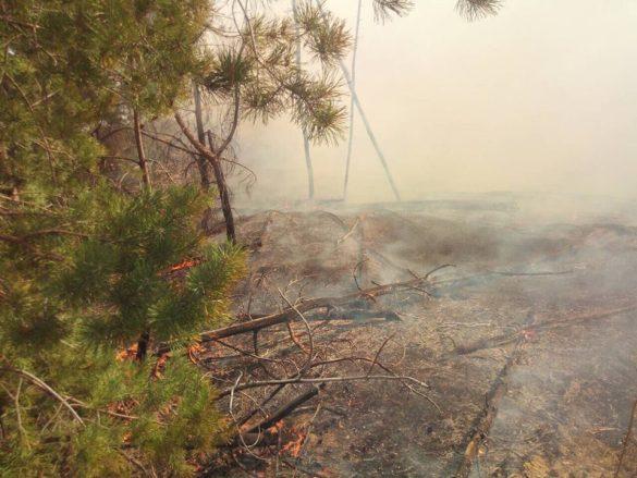 Из-за мин в Донбассе не могут потушить пылающий Станично-Луганский район