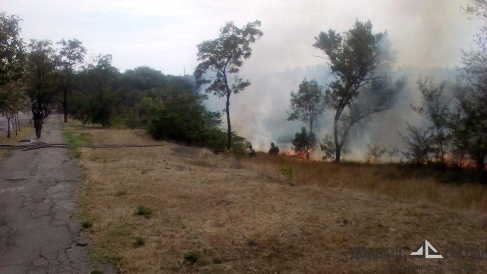 Игра с огнём уничтожила мариупольский парк