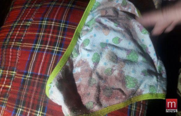 В Мариуполе крыса-мутант едва не загрызла ребёнка