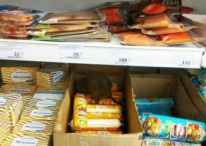 В Мариуполе на полках супермаркета Ахметова завелись крысы