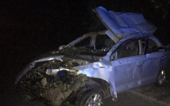 Пять жителей Доброполья на авто вылетели в кювет, есть жертвы