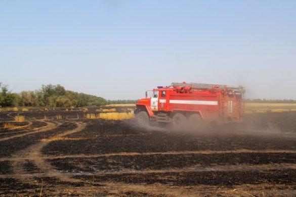 В ДНР выгорели десятки га пшеницы и ячменя на корню