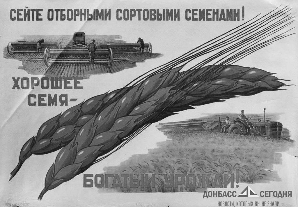 Озимая пшеница в Луганске собрана на 90%, горчица — на 86%