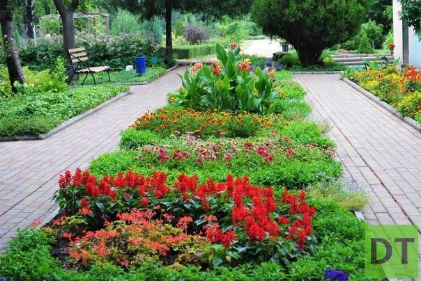 Француженка похвалили сотрудников зеленстроя за чистый и красивый Донецк