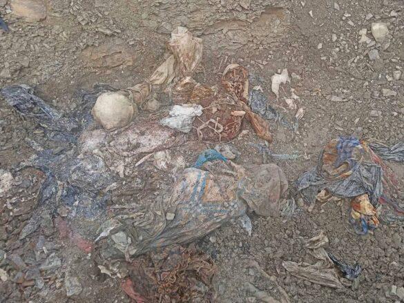 Под Краснодоном подняли останки 36 жертв ВСУ